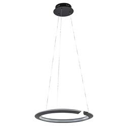 *Hanglamp ring zwart
