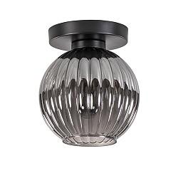 Smoke glas plafondlamp met zwart