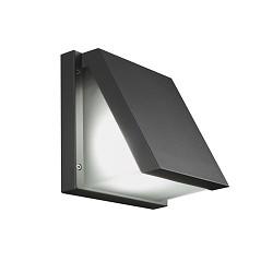 Buitenlamp-wandlamp antraciet incl. LED