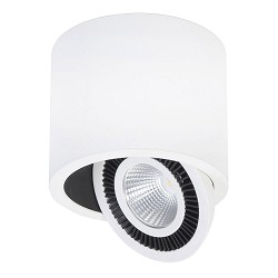 **Design Spot Eye wit LED verstelbaar