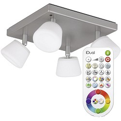 **Idual plafondl. Emerald LED met remote