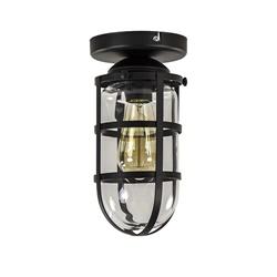 Zwarte Kooi- plafondlamp met glas