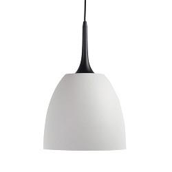 **Wit met zwarte hanglamp koepel