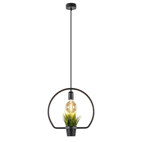 Sfeervolle hanglamp zwart inclusief plantje