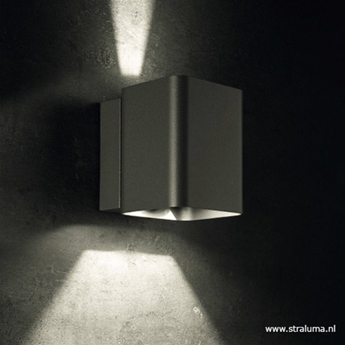 LED buitenlamp up+down antraciet IP54