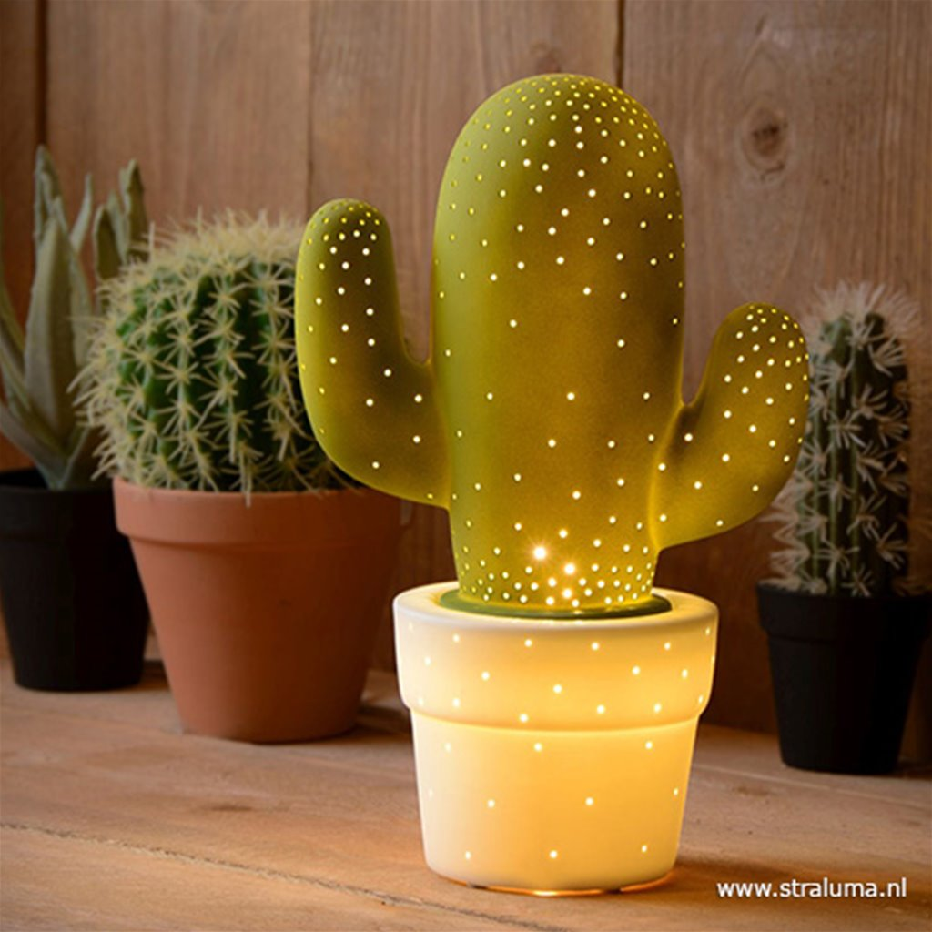 Tafellamp cactus groen wit