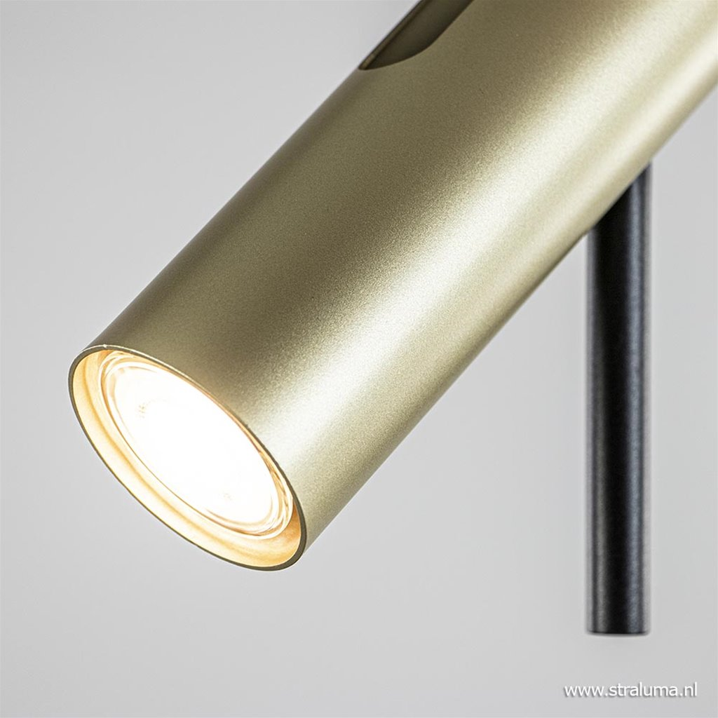Zwart gouden plafondspot 2-lichts verstelbaar