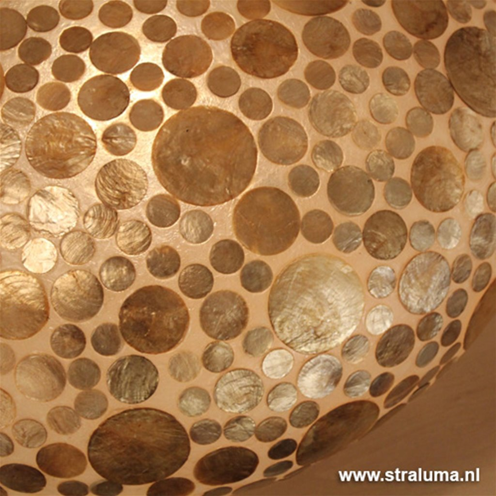 Schelpen tafellamp coin goudbr. groot